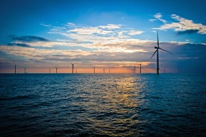 Sunset view of London Array turbines. Courtesy of London Array.